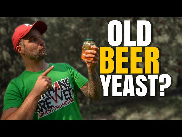 How Long Can You Store Liquid Yeast? - Using old yeast