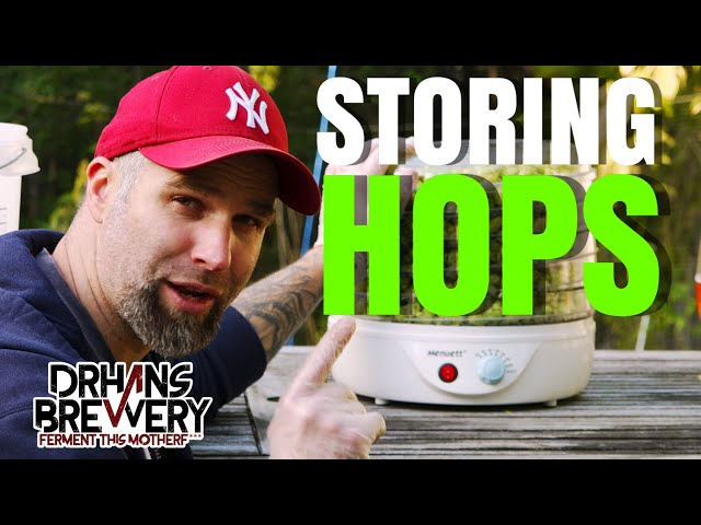 Best Way To Store Hops at Home - Growing Hops  101 - Part 5