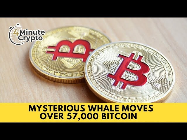 Mysterious Whale Moves Over 57,000 Bitcoin