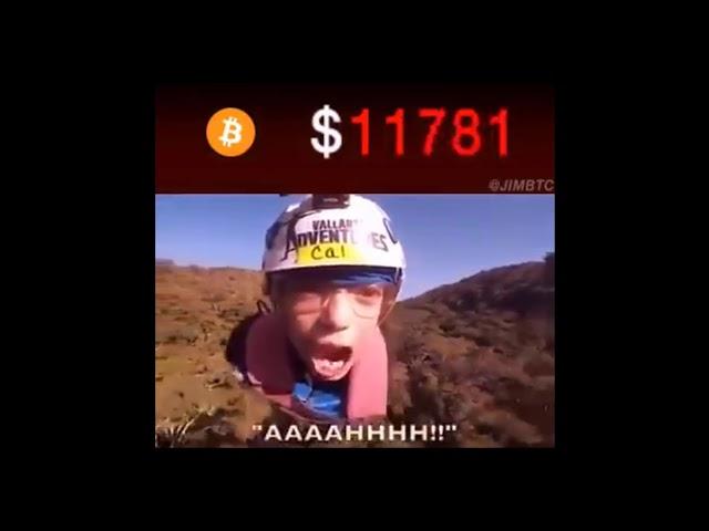 Bitcoin Rollercoaster!!!